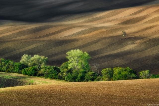 Morawy Jesienią