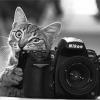 Portrety / Akty - ostatni post przez Fotostylepl
